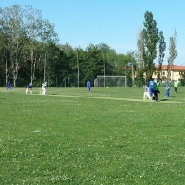 2014.06 Serie A Bologna (9)