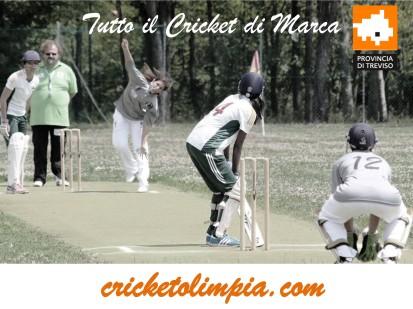 cricketolimpia.com